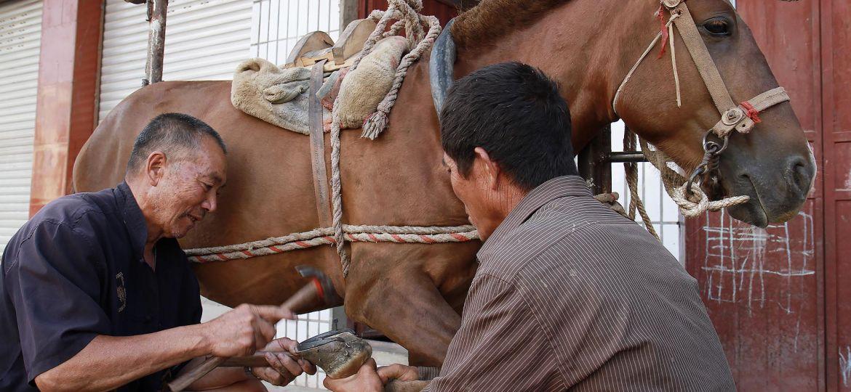 201108 header china off the beaten track