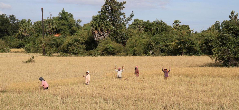 201112 header cambodia bienvenue chez les khmers